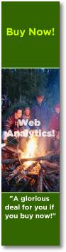 web analytics ad