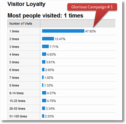 visitor loyalty analysis