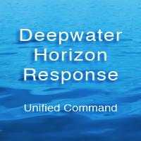 Deep Water Horizon Response
