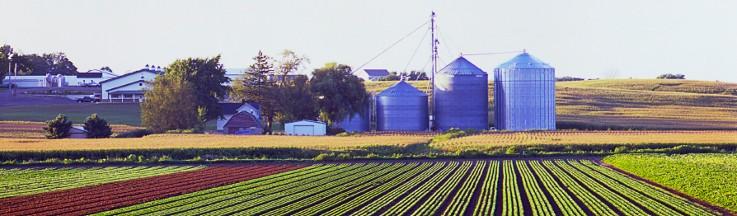 West MI Farm