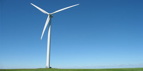 As the Nation strives to lessen its dependence on foreign oil the ecological effects of wind energy development remain largely undocumented.
