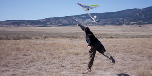 """Reaching for the sky: Using a """"Raven"""" to count Cranes"""