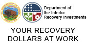 DOI Recovery Effort