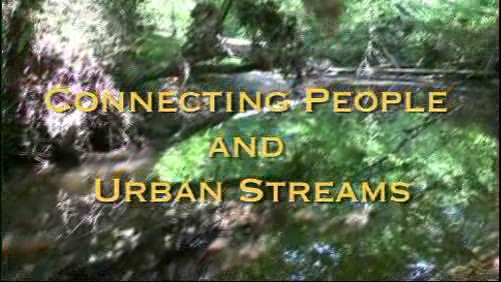 Connecting People and Urban Streams