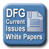 DFG Current Issues White Papers