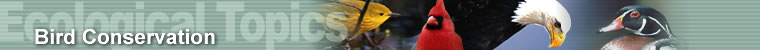 Ecological Topics - Bird Conservation