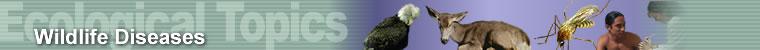 Ecological Topics - Wildlife Diseases