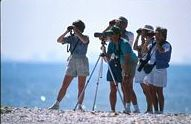 People bird watching