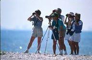 People bird watching