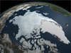 visualization showing Arctic sea ice coverage