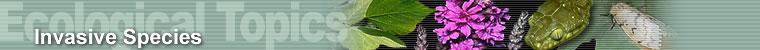 Ecological Topics - Invasive Species