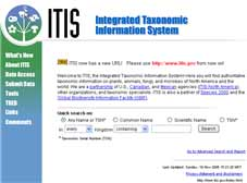 Integrated Taxonomic Information System website image