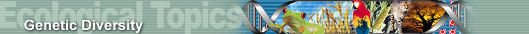 Ecological Topics - Genetic Diversity