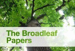 The Broadleaf Papers