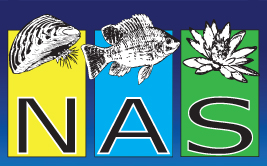 NAS logo - click to go to the NAS home page