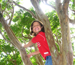 Young student explores a tree