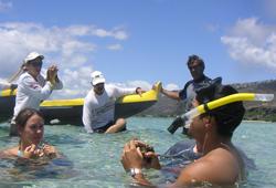 Volunteers learn about limu, or seaweed, for reef surveys.