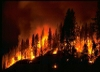 Fire, US Forest Service