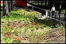 Green Infrastructure Project