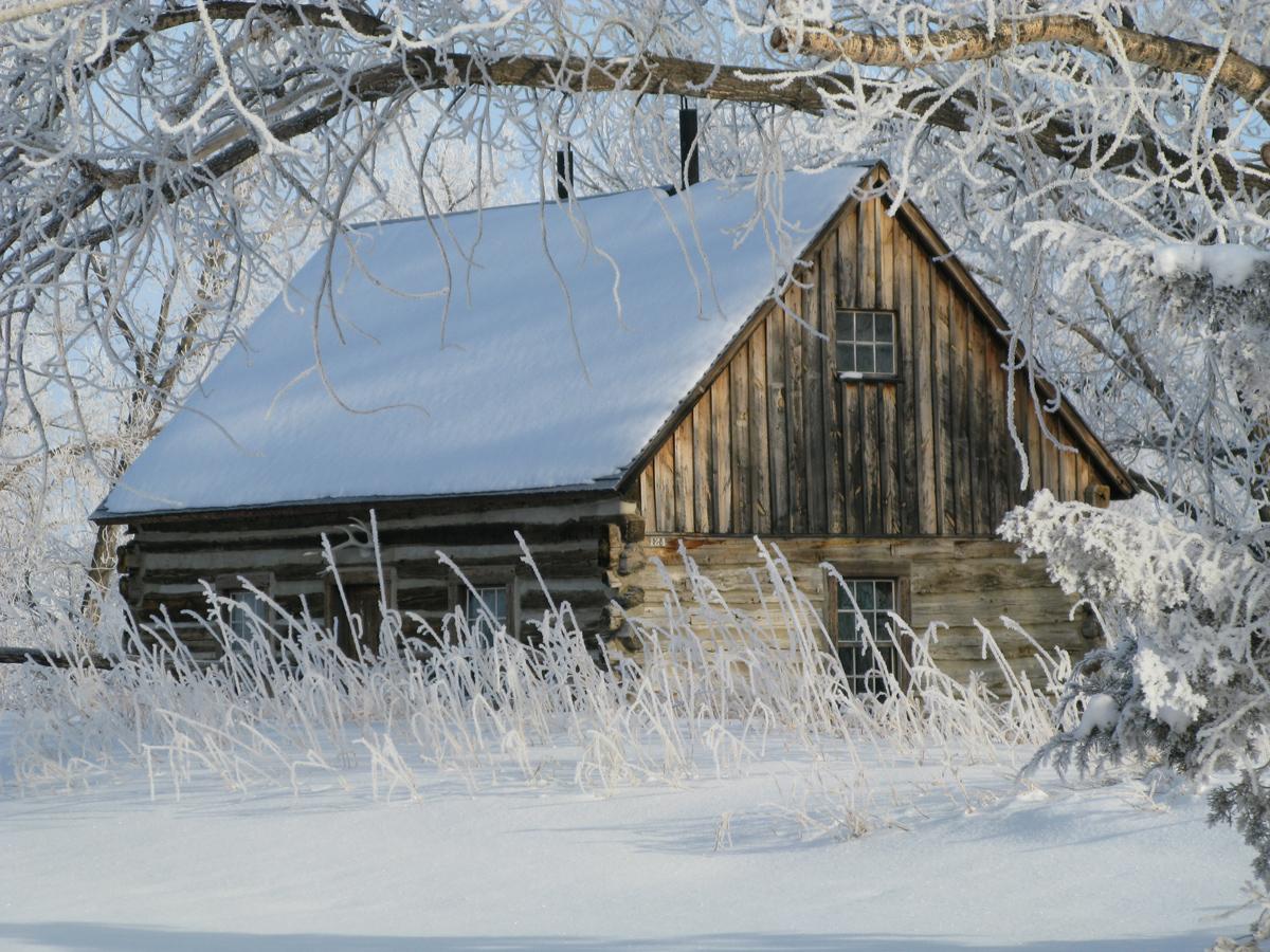 THRO Winter