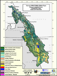 Upper Snake Current Wildlife Habitat Type Map