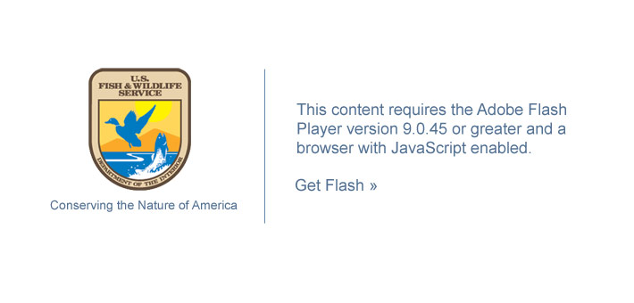 This content requires the Adobe Flash Player version 9.0.45 or greater and a browser with JavaScript enabled.  Get Flash.