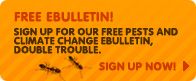 Free e-bulletin