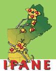 IPANE logo