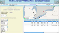 MEAP-VHSV Database Interface [Image: NACSE]