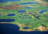 Prairie Pothole Wetlands