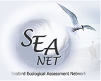 screenshot of SEANET web site