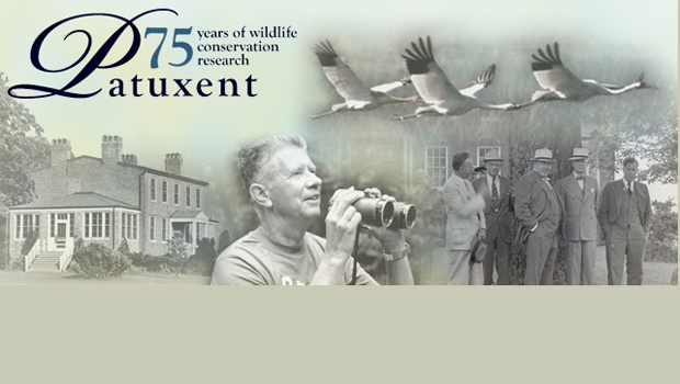 Celebrating Patuxent: 75 Years of Wildlife Conservation Research