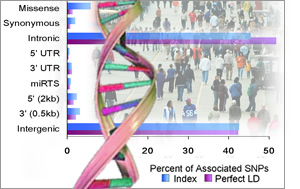 A sample graph, people and a DNA-helix