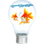 Two little fish in a light bulb filled with water