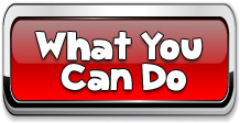 What You Can Do