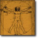 Leonardo da Vinci's Vitruvian Man illustration