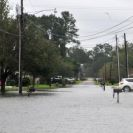 Photo: Gretna, La., Aug. 30, 2012 -- A road in Gretna, LA is flooded after Hurricane Issac dumped rain in the area. FEMA is working with local, state and other federal agencies to provide assistance to residents and businesses affected by Hurricane Isaac.