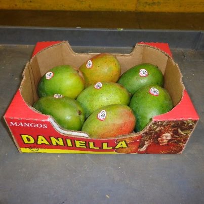Photo: http://go.usa.gov/rUDx   Produce distributor Splendid Products is voluntarily recalling certain lots of Daniella brand mangoes because they may be contaminated with Salmonella. The recalled mangoes, a product of Mexico, were sold as individual fruit and can be identified by the Daniella brand sticker and one of the following PLU numbers: 3114, 4051, 4311, 4584 or 4959.