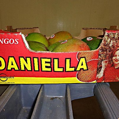 Photo: http://go.usa.gov/rEDT  World Foods, LLC is initiating a voluntary, precautionary recall on various products it distributes to retail supermarkets that contain mangoes associated with the Splendid Products recall of Daniella Brand Mangoes with the potential to be contaminated with Salmonella.