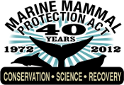 MMPA Turns 40: Protecting Marine Mammals Since 1972
