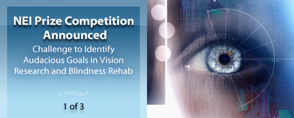 NEI Prize Competition Announced