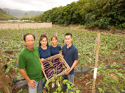 The Ho family on their farm, with a box of Japanese eggplant
