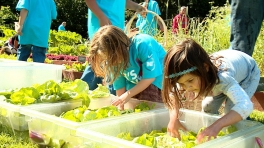 First Lady Michelle Obama Hosts Three Sisters Garden Planting & Harvest