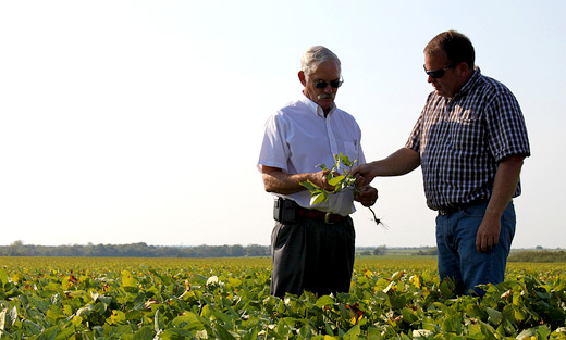 USDA Undersecretary Michael Scuse and Cass County FSA committeeman and farmer Trent Smith discuss the drought's impact on this year's soybean crop.