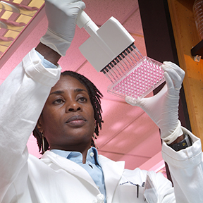 Nana Gletsu Miller researches effects of excess adipose tissue on obesity-related diseases