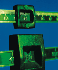 A photograph of a scale