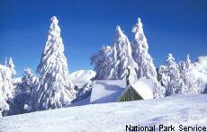 Fotografía de una escena nevosa