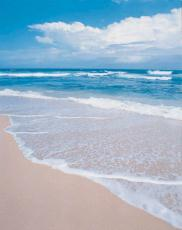 Photograph of the sand, ocean and sky