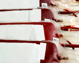 Copyrighted photo of two pints of blood stored in bags.