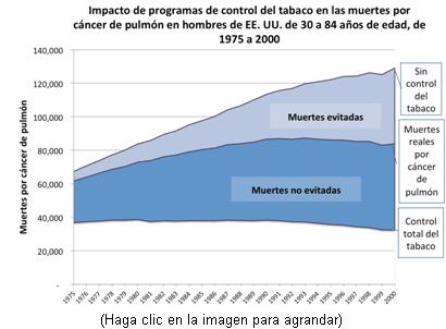 Este gráfico presenta los índices de mortalidad por cáncer de pulmón de 1975 al 2000, bajo los tres escenarios estudiados por los investigadores; i. e., Sin control del tabaco, Control real del tabaco y Control total del tabaco. Este gráfico ofrece datos de hombres de Estados Unidos.